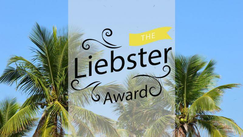 The Liebster Award - from bloggers to bloggers